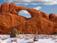 Sneeuw in Arizona, foto's vanuit de woestijn