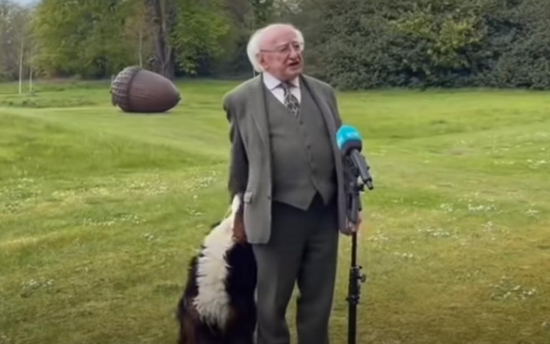 De hond van de president van Ierland gaat viraal
